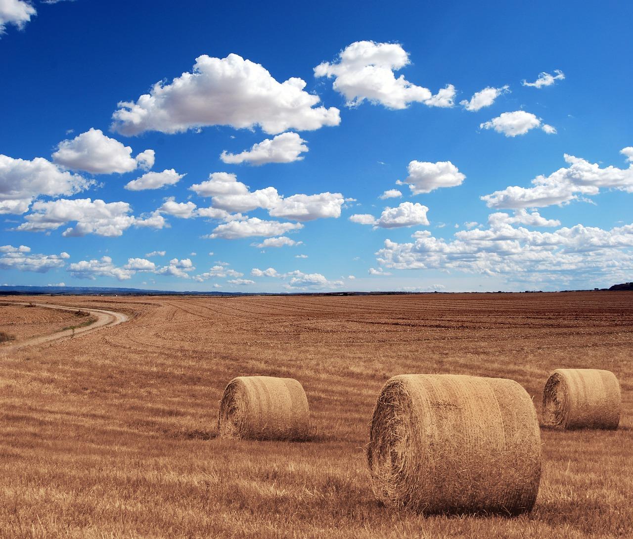 zadłużenie rolników